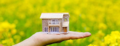 Hand-holding-a-small-house-with-field-in-background-604x2703